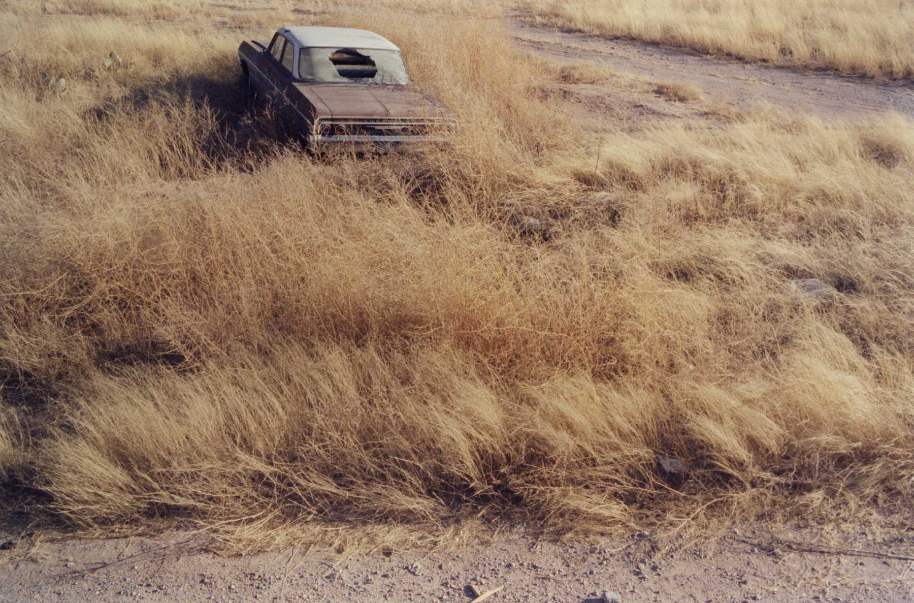 Untitled-Texas-#1